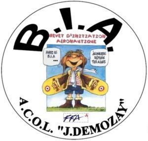 Présentation de la promotion BIA 2021   Youri GAGARINE